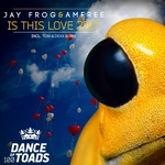 JAY FROG & AMFREE - Is This Love 2017 (Front Cover)