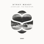 STRAY BEAST - Overflow/The Resistor (Front Cover)
