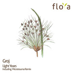GROJ - Light Years (Front Cover)