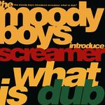 THE MOODY BOYS - What Is Dub? (Front Cover)