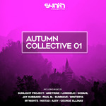 VARIOUS - Autumn Collective 01 (Front Cover)