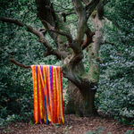 JAMES HOLDEN & THE ANIMAL SPIRITS - Each Moment Like The First (Front Cover)