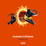 SHADOWFACT & DV8 ROCKS! - Ring Of Fire (Front Cover)