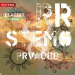 FLAGMAN DJS - PRVA088 (Front Cover)