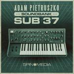 Adam Pietruszko: Moog Sub 37 Soundbank (Sample Pack Moog Presets)