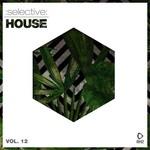 Selective: House Vol 12