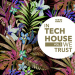 VARIOUS - In Tech House We Trust Vol 2 (Front Cover)