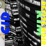 CID RIM - Swnerve (Front Cover)