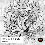 VARIOUS - Best Of BCSA Vol 12 (Front Cover)