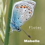 FLOTEC - Mabelle (Front Cover)