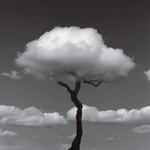 VETZMANE - Sometimes EP (Front Cover)