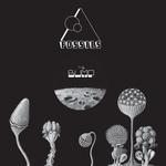 UV & NEN - The Bump EP (Front Cover)