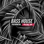 VARIOUS - Bass House Phenomena Vol 1 (Front Cover)