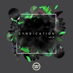 VARIOUS - Syndication Vol 28 (Front Cover)