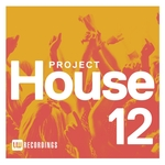 VARIOUS - Project House Vol 12 (Front Cover)