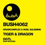 ROEL SALEMINK/DRUMCOMPLEX - Tiger & Dragon (Front Cover)