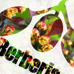 LEGIT TRIP - 10.05 EP (Front Cover)
