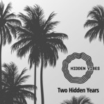 VARIOUS - Two Hidden Years (Front Cover)