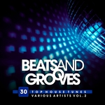 Beats And Grooves (30 Top House Tunes) Vol 2