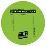 THE DAT PROJECT/MLH/TRANSITIVE ELEMENTS - Sound Of House Vol 6 (Front Cover)