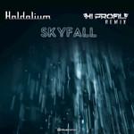 HALDOLIUM feat JAN SCHMIDT - Skyfall (Hi Profile Remix) (Front Cover)