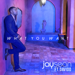 JAY SEAN/DAVIDO - What You Want (Front Cover)
