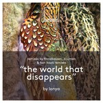 LONYA - The World That Disappears (Front Cover)