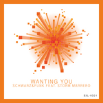 SCHWARZ & FUNK - Wanting You (Front Cover)