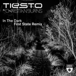 TIESTO feat CHRISTIAN BURNS - In The Dark (Front Cover)