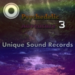 VARIOUS - Psychedelic Adventure 3 (Front Cover)