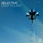 VARIOUS - Selective/Deep House Vol 3 (Front Cover)