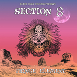 SECTION 8 - Fringe Element (Front Cover)