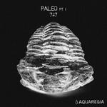 Paleo (Part 1)