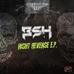 Night Revenge