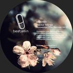 GOOSEPOPS The Remixes 01