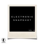 Electronic Snapshot Vol 6