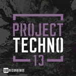 Various: Project Techno Vol 13