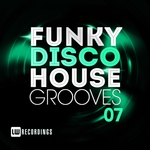 Funky Disco House Grooves Vol 07