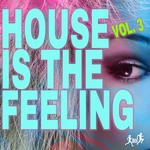 House Is The Feeling Vol 3