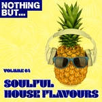 Nothing But... Soulful House Flavours Vol 04