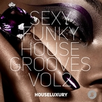 Sexy Funky House Grooves Vol2