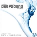 DJ SS & Influx UK Present: Deepsound Vol 2
