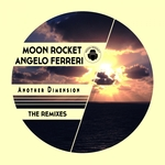 Another Dimension (The Remixes)