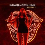 Ultimate Minimal House Vol 2