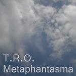 Metaphantasma