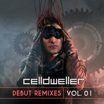 Debut Remixes Vol  01