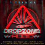 1 Year Of Dropzone Audio LP