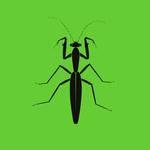 Praying Mantis EP