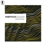 Ambitious Sounds Vol 3 The Deep Side Of Tech House