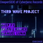 Third Wave Project